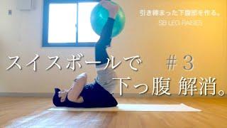 SB-3【腹筋】SWISS BALL レッグレイズ Swiss Ball スイスボール【バランスボールエクササイズ】