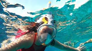ШОК от сервиса и самый красивый риф в Египте Domina coral bay aquamarine поражает