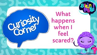 What happens when I feel scared?