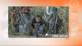اللاجئون السوريون ودروب الآلام والموت! برنامج نقطة حوار