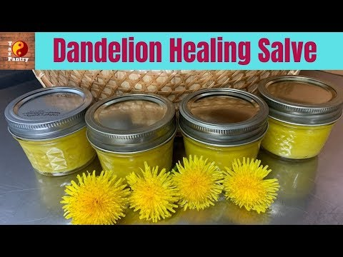 Dandelion Healing Salve - Natural Remedy for Dry Hands!