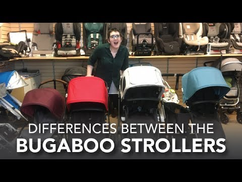 Differences Between the Bugaboo Strollers | Cameleon, Donkey, Buffalo, Bee5 | 2017 Reviews