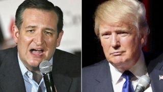 Gingrich urges Cruz, Trump to find a way to work together