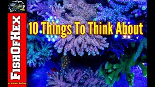10 Things Every Beginner Saltwater Hobbyist Should Be Thinking About