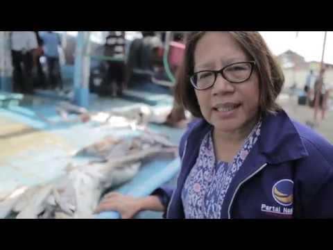 Jaring Gilnet Nelayan Kerap Tak Sengaja Tangkap Ikan Hiu