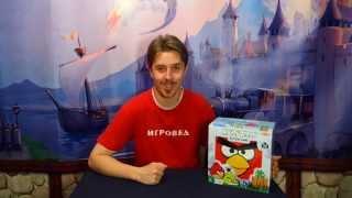Angry Birds (Tactic). Обзор настольной игры от Игроведа(Angry Birds во плоти! Ну-ка, кто тут самый меткий? Попробуй сбить зеленую свинку смешными сердитыми птичками!..., 2013-07-19T05:15:48.000Z)