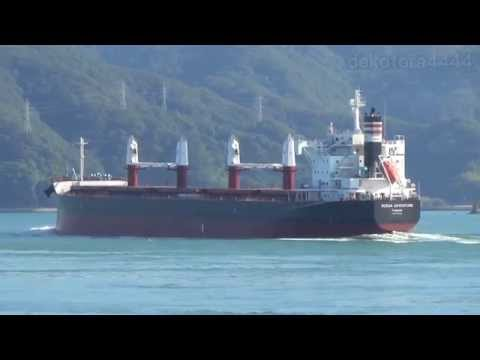 Bulk Carrier「OCEAN ADVENTURE 」