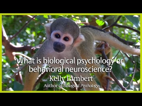 What is biological psychology or behavioral neuroscience?