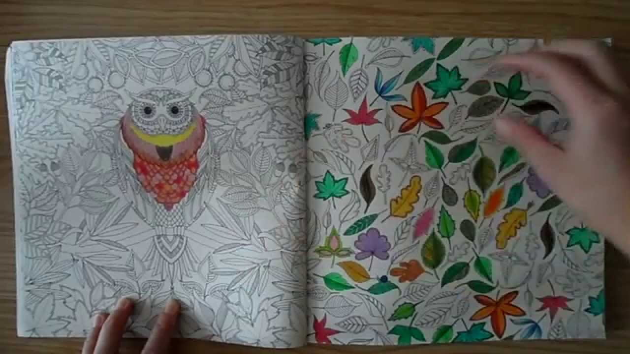 Thai Secret Garden Colouring Book Review Thai Version