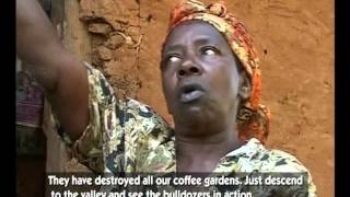 The Dream of REDD: Underlying Causes of Forest Degradation & Community Voices on REDD+ - Uganda