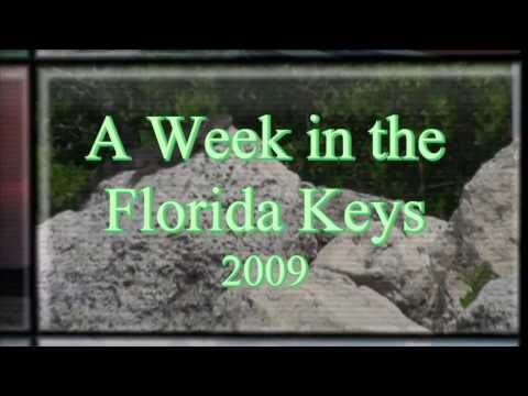 A Week in the Florida Keys - Ancient History