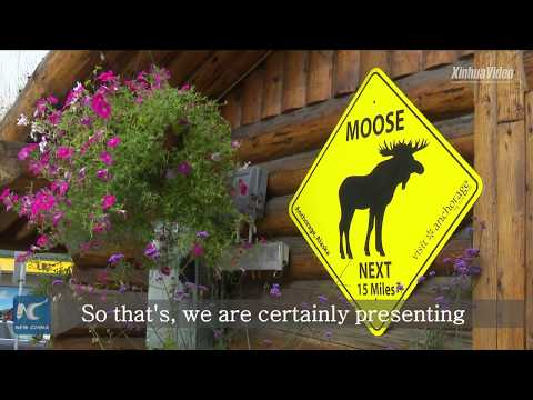 Alaska eyes broader economic ties with China