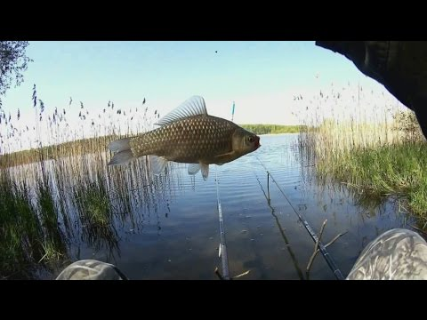 рыбалка в марчугах видео