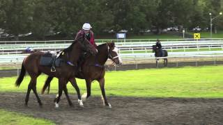 Gena the pony  rider