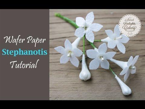 Wafer Paper Stephanotis Tutorial
