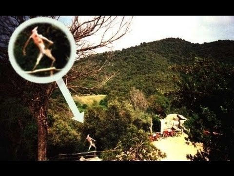 Top 7 Sightings of Strange Cryptids Believed To Be Real ...
