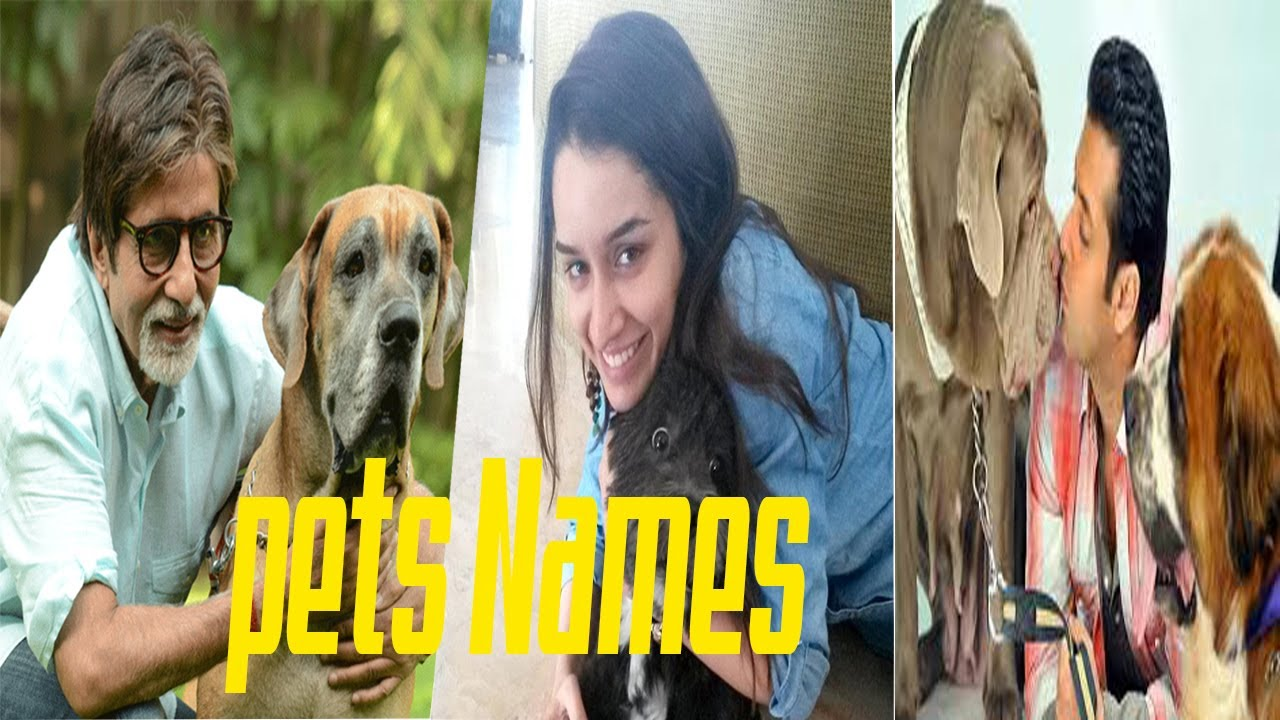 5 Bollywood Celebrities and Unique Names of Their Pets