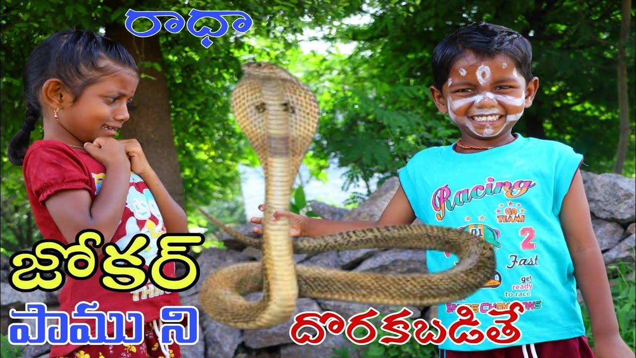జోకర్ పాము ని దొరకబడితే / Village Joker Pamu ni Dorakabadithe / Radha Videos / Maa Village Show