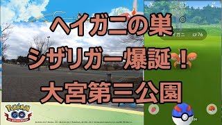 【ポケモンGO】ヘイガニの巣でシザリガーに進化! in 大宮第三公園