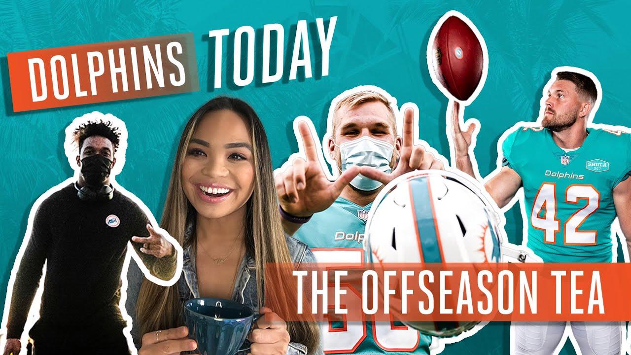THE OFFSEASON TEA   Dolphins Today