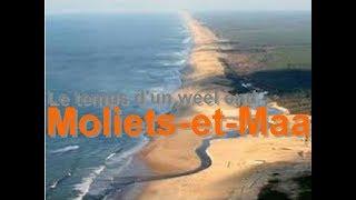Moliets-et-Maa LANDES