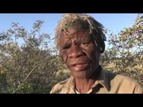 Mr Cobra Kepile - a bushman guide and leader at Jacks Camp in Botswana