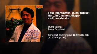 Four Impromptus, D.899 (Op.90) No. 1 in C minor: Allegro molto moderato