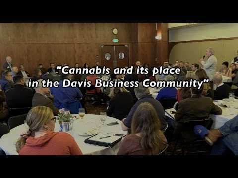 Cannabis and its place in the Davis Business Community