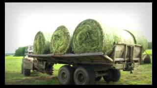 Усть-Бакчарское - самое крупное сельхозпредприятие на севере Томской области
