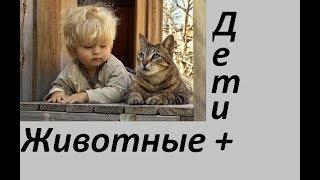 Дети+Животные