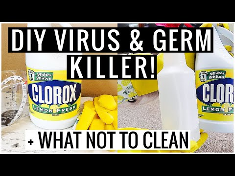 Bleach Cleaning Disinfectant Spray DIY (Clean With Me!)