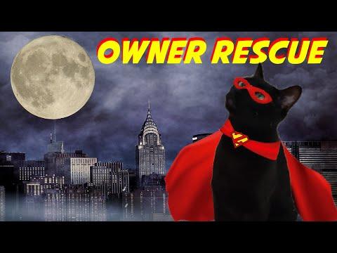 Cats Save Owners | Cat Saving Human Life