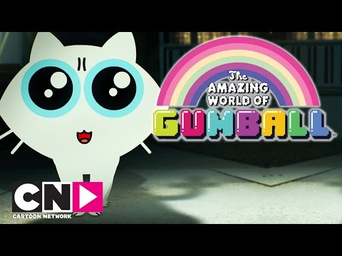 The Amazing World of Gumball | Grumpy Cat | Cartoon Network