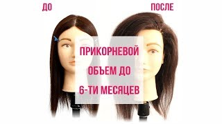 Прикорневой объем с использованием клипс и роликов. MBShop