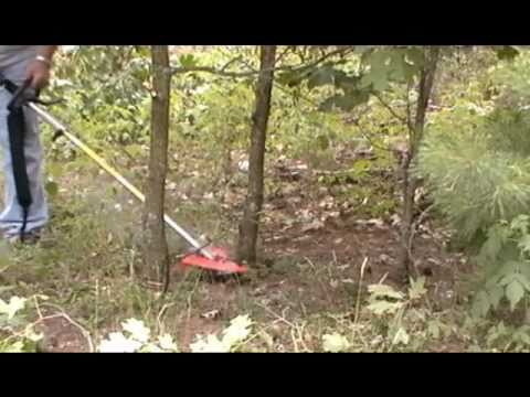 Stihl km 130 trimmer with circular saw blade brushcutter youtube stihl km 130 trimmer with circular saw blade brushcutter greentooth Choice Image