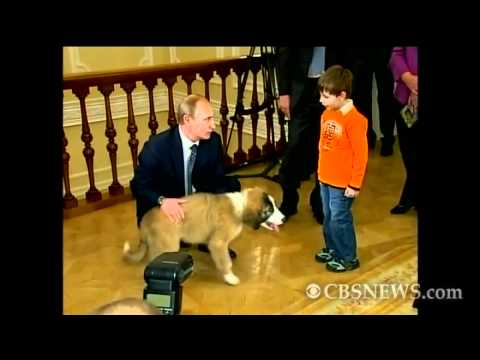 Russian Prime Minister's Puppy