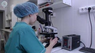 Бифидобактерии оценили. О перспективах рынка пробиотиков рассказали в Новосибирске