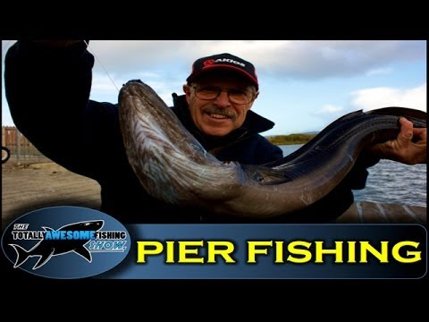 Pier fishing tips (Part 2) - How to catch Conger Eels from a pier - Totally Awesome Fishing Show