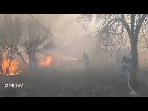 Пожар в Волгограде: огонь локализован на 20 га, пять домов сгорели