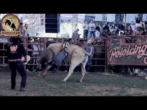 Ordeñando La Vaca - Banda Retoño (SONES CON BANDA)