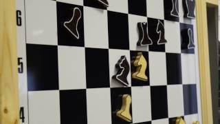 """Урок Владимира Крамника в """"Сириусе"""". Видео 9"""