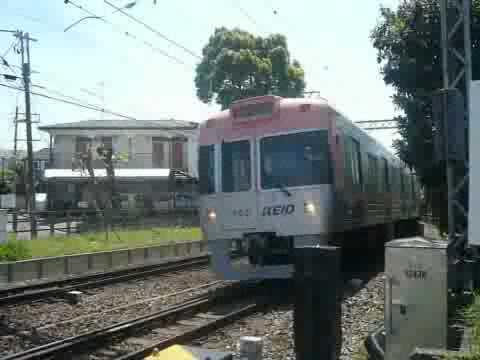 京王電鉄1000系5次車(サーモンピンク色) 急行 井の頭線