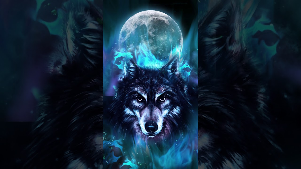 Samsung Theme Video Wallpaper Video Blue Neon Wolf Youtube