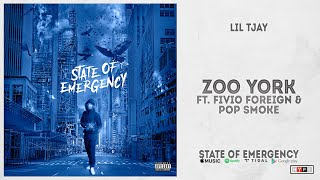 """Lil Tjay - """"Zoo York"""" Ft. Fivio Foreign & Pop Smoke (State of Emergency)"""