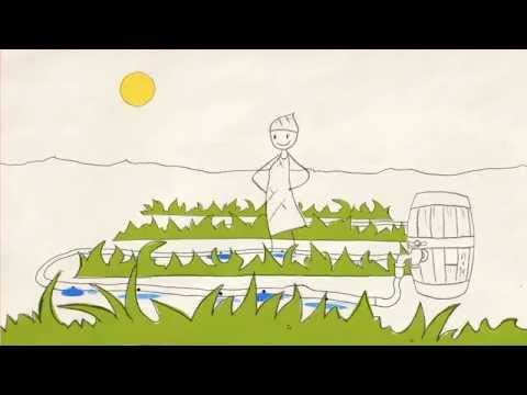 The Story of Agriculture and the Green Economy