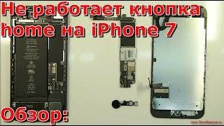 Часть 1 почему не работает кнопка Home iPhone 7, замена хоме, не работает touch id на айфоне 7
