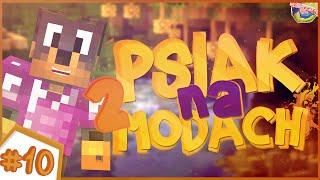 Minecraft: PSIAK NA MODACH II [#10] | ABRA KIELISZEK MAGGI CHALLENGE + TROLL?! w/ NARF