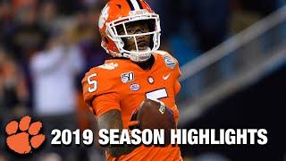 Tee Higgins 2019 Season Highlights | Clemson WR