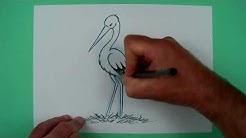 Wie zeichnet man einen Klapperstorch? Zeichnen für Kinder