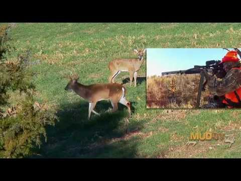The Best DEER Hunt Of The Season:  Shooting A Big Hit List BUCK